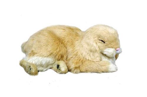 precious petzzz the lifelike breathing huggable pet. Black Bedroom Furniture Sets. Home Design Ideas
